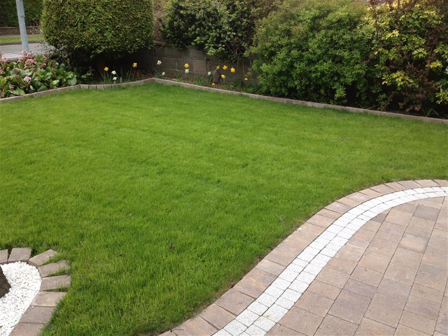 Lawn Replacements Cork