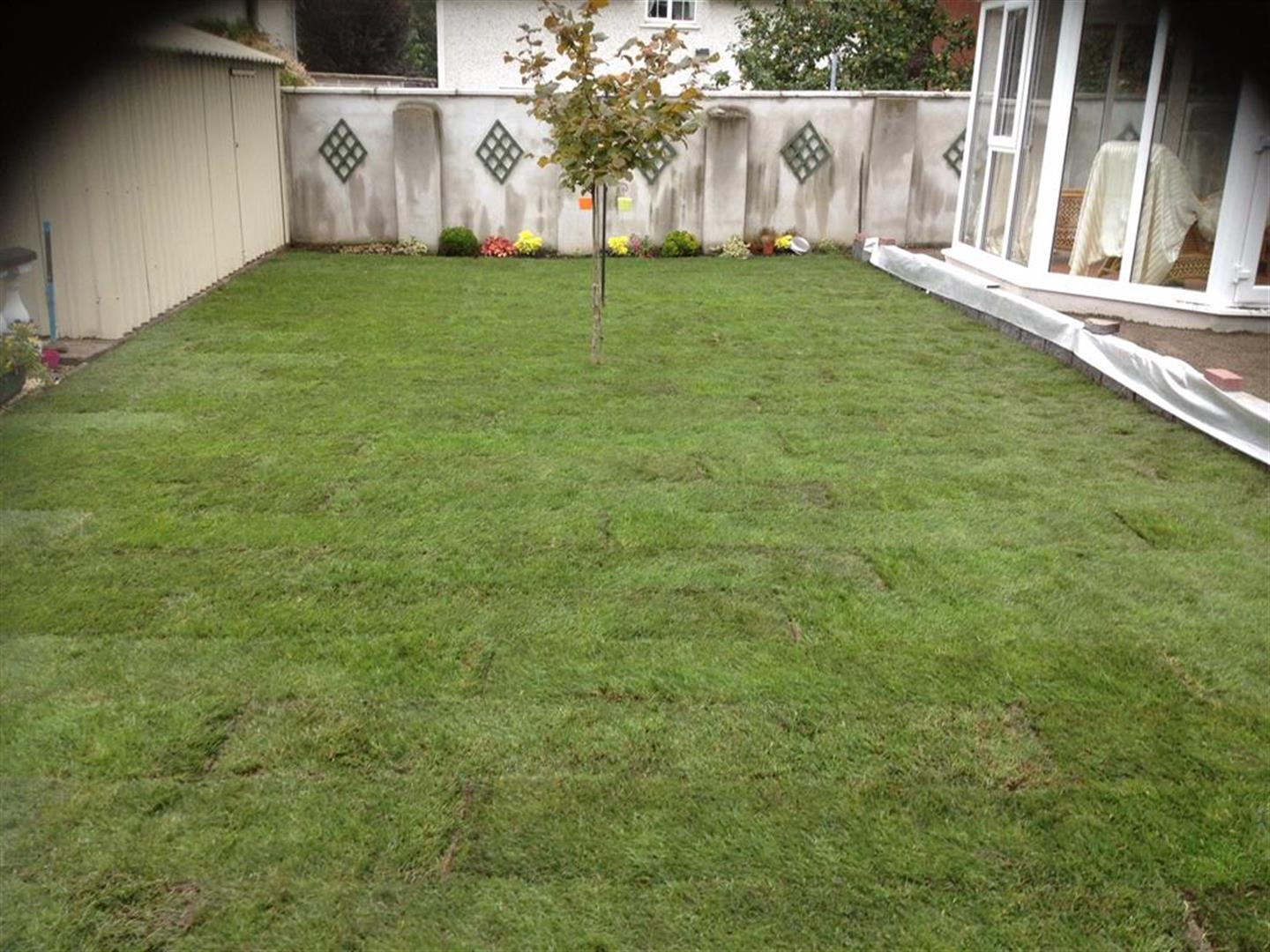 New Lawn in Cork